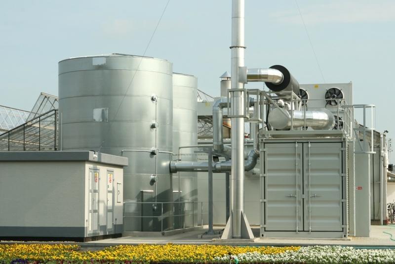 kogenerace skleníky ostrá